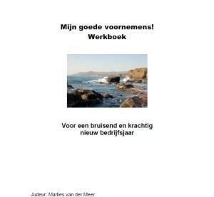 Goede voornemens werkboek