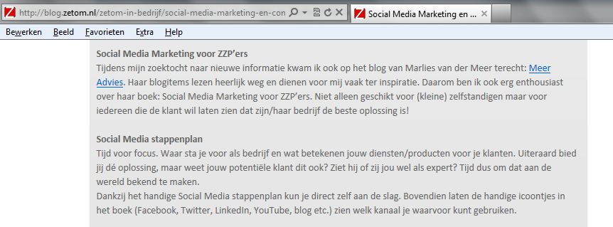 recensie social media marketing zzp ZetOm