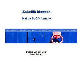zakelijk bloggen eboek